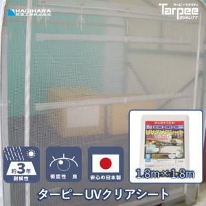 透明シート UVクリア 1.8mX1.8m|hagihara-e
