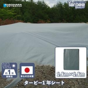 1年シート スマートグレー 1.8mX1.8m|hagihara-e