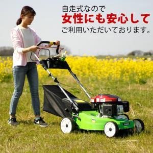 (アウトレット 保無) 芝刈り機 自走式 5馬力 159cc エンジン 刈り幅500mm HG-KCL120S17|haige|02