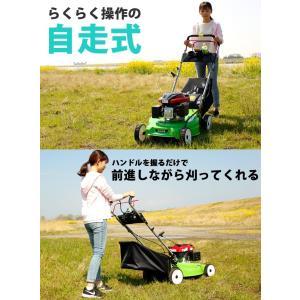 (アウトレット 保無) 芝刈り機 自走式 5馬力 159cc エンジン 刈り幅500mm HG-KCL120S17|haige|03