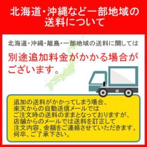 カミキ 防振手袋 天然牛表革製 TC-1 ( TC1 )|haikanshop|02