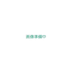 工進 高圧洗浄機 エンジン式 JCE-1408UDX