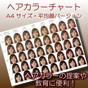 ヘアカラーチャート(平均顔ベース)|A4サイズ|髪色見本|hair-color