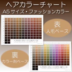 【旧デザイン】ヘアカラーチャート(ファッションカラー・おしゃれ染め)|A5サイズ両面|表:仕上がりのイメージ|裏:カラー剤の色のイメージ||hair-color