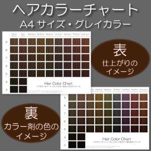 ヘアカラーチャート(グレイカラー・白髪染め)|A4サイズ両面|表:仕上がりのイメージ|裏:カラー剤の色のイメージ|日本語・英語併記|hair-color