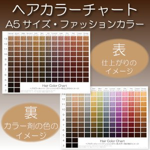 ヘアカラーチャート(ファッションカラー・おしゃれ染め)|A5サイズ両面|表:仕上がりのイメージ|裏:カラー剤の色のイメージ||hair-color