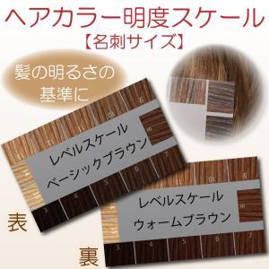 ヘアカラー明度スケール レベルスケール 名刺サイズ両面 3-15レベル 表面:ベーシックブラウン 裏面:ウォームブラウン|hair-color