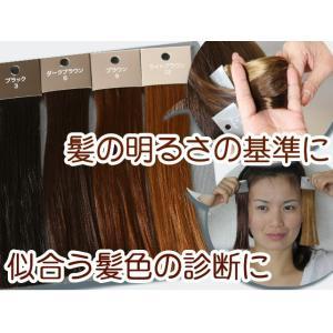 ヘアカラー色見本4色セット ヘアカラーレベルスケール 3レベル 6レベル 9レベル 12レベル ブラウン ブラック hair-color