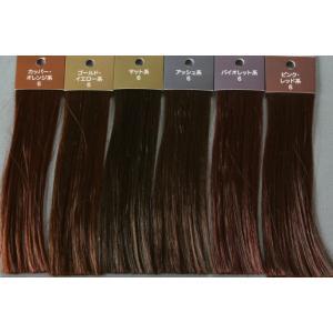 ヘアカラー色見本6レベル6色セット hair-color