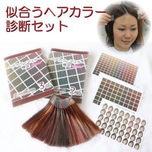 似合うヘアカラー診断セット(ヘアカラーマスター検定公式テキスト3級・2級・ヘアカラー色見本・ヘアカラーチャート付) hair-color