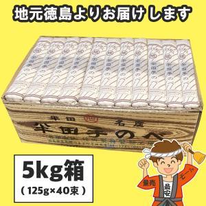 半田そうめん (手のべ) 5kg(125g×40束) 竹田製麺(のし 無料)【発送重量 5kg】codeB1|hakariurisaiyasu