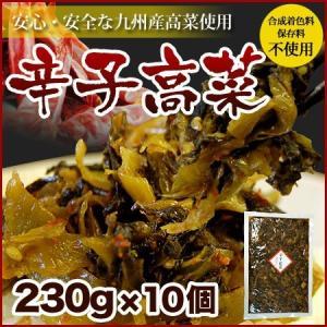 博多辛子高菜(230g×10袋)九州産高菜を使用 |hakataichi