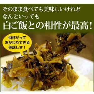 辛子高菜 230g×1袋 博多 送料無料 ポイント消化  おにぎり・チャーハン・ラーメン・パスタにどうぞ hakataichi 06