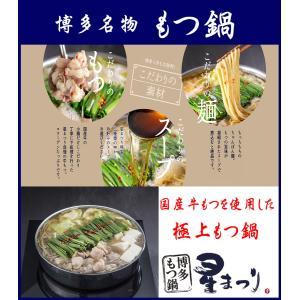 博多もつ鍋 星まつり しょうゆ味 2〜3人前 鍋セット ミシュランガイド もつ鍋セット