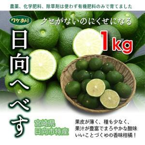 宮崎県のお得なわけあり「へべす」!!  へべす果実【ご家庭用 袋入り】1kgです。 サイズ混合でご家...