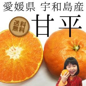 愛媛県宇和島産【甘平】 4kg(家庭用) 【樹上完熟!!】 【数量限定】