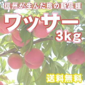 【予約受付中】ワッサー 約3kg 12個前後  桃 信州 長野県産 大きさミックス  期間・数量限定