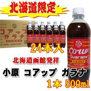 ガラナ ) 北海道限定炭酸飲料 500ml×24本入