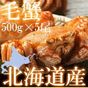 身の詰まったおいしい北海道産 毛ガニです。 ボイル済み/2.5キロ強 (500g強×5杯)/■ 簡単...