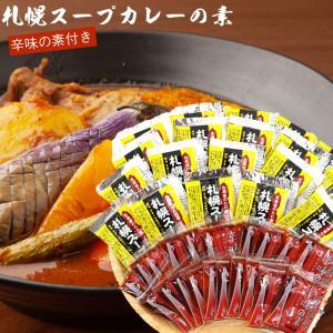 札幌 スープカレー の素 20食分 (送料無料 北海道 ソラチ(濃縮タイプ) 札幌 スープカレー 北...