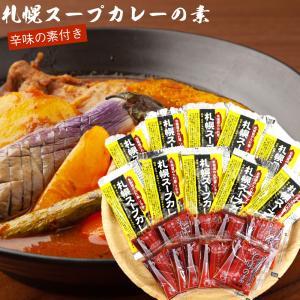 札幌 スープカレー の素 10食分 (送料無料 北海道 ソラチ(濃縮タイプ) 札幌 スープカレー 北...