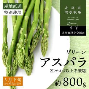 アスパラ 北海道産 ギフト お取り寄せ グリーン アスパラガス 早期予約 2L以上 400g×2束 バーベキュー 食材 BBQ