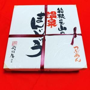 箱根のお山の温泉まんじゅう|hakonehisui