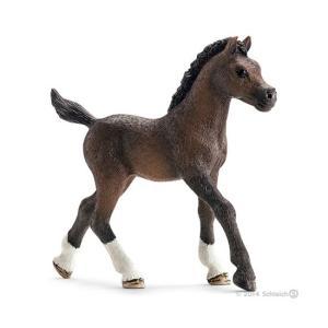シュライヒ 13762 アラビア馬(仔) 動物フィギュア|hakoniwa