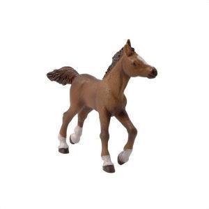 PAPO(パポ) 51076 アングローアラブ子馬  動物フィギュア|hakoniwa