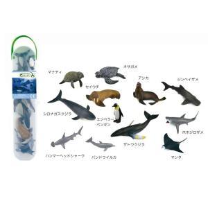 コレクタ/COLLECTA A1107 ミニシーアニマルBOX1 動物フィギュア|hakoniwa
