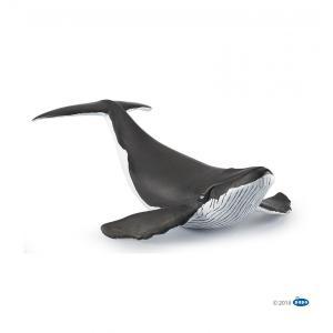 PAPO(パポ) 56035 ザトウクジラの子ども  動物フィギュア|hakoniwa