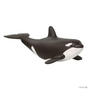 シュライヒ 14836 シャチ(仔) 動物フィギュア|hakoniwa