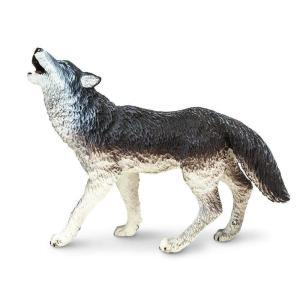 Safari (サファリ)273829 タイリクオオカミ 動物フィギュア|hakoniwa