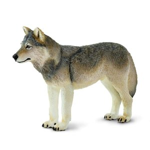 Safari (サファリ)100509 タイリクオオカミ2 動物フィギュア|hakoniwa
