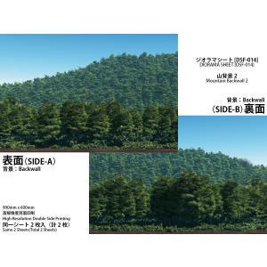 [箱庭技研]ジオラマシート DSF-014 山背景2 2枚入
