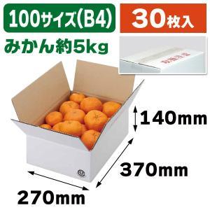 (無地段ボール)A式白4号/30枚入(EE-303)