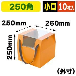 アレンジキャリーBOX Mオレンジ/10枚入(F-331X)《小口》