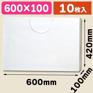 (手提袋)ブライトバッグ LL 白/10枚入(K05-4901755590760)|hakonomise