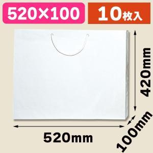 (手提袋)ブライトバッグ L 白/10枚入(K05-4901755590777)|hakonomise
