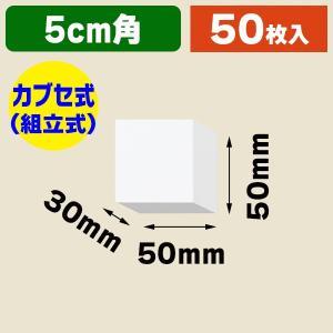 (ギフトボックス)DX白無地箱 A-1 アクセサリー用 S/50枚入(K05-4901755700015)|hakonomise
