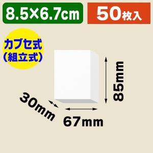 (ギフトボックス)DX白無地箱 A-2 アクセサリー用 L/50枚入(K05-4901755700022)|hakonomise