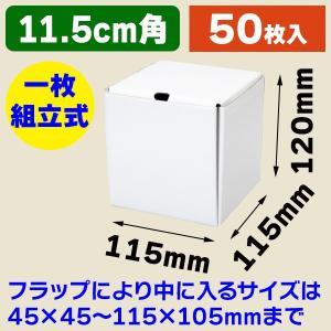 (小型段ボール箱)ブルームBOX BM-100/50枚入(K05-4901755723991)|hakonomise