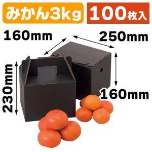 (果物の箱)美果3kg/100枚入(L-2062)