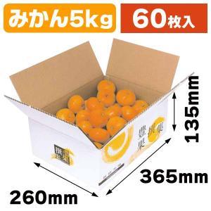 (果物の箱)豊果撰集5kg/60枚入(L-2157)