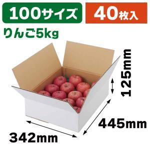 (無地段ボール)A式りんご白無地5kg/40枚入(L-2234)