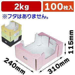 見えるコンテナ 2K(全4色)/100枚入(L-2411-4)|hakonomise