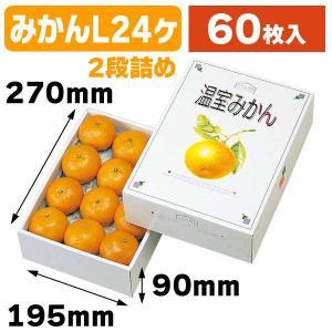 (みかんの箱)温室みかん2kg/60枚入(L-332)