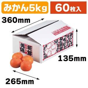 (みかんの箱)新鮮みかん5kg/60枚入(L-426)|hakonomise