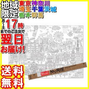 マルアイ/NuRIE(ヌーリエ)TOKYO TOKIO A0(1189×841mm)/NU-S1 hakourisenka