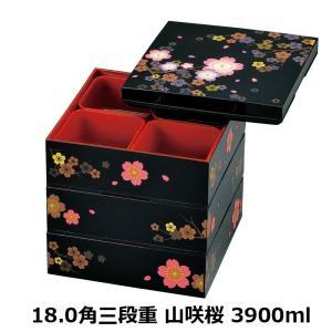 お重箱 重箱 お弁当箱 弁当箱 ランチボックス おしゃれ 3〜4人用 HAKOYA 18.0角三段重...